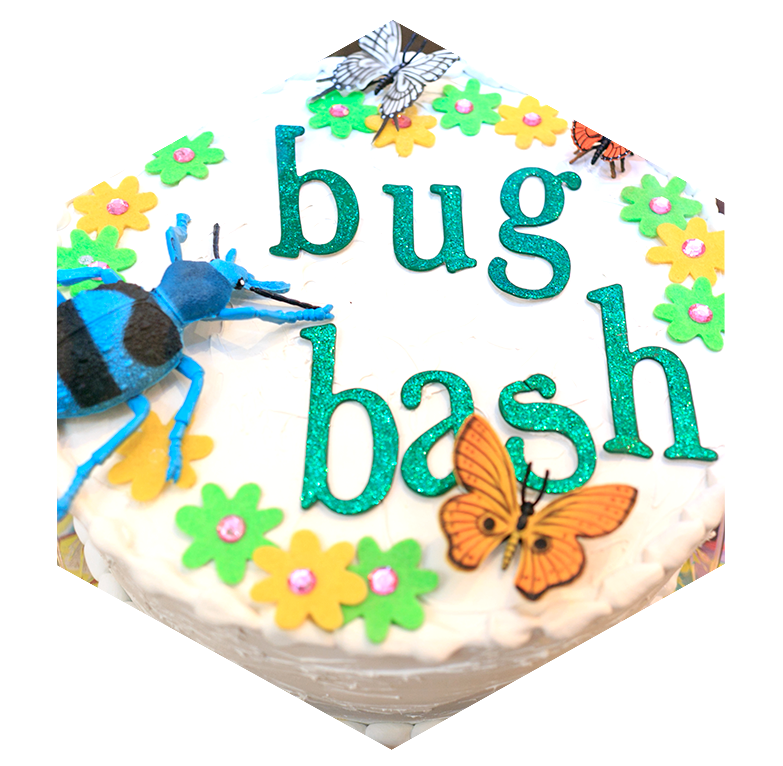 insectropolis-bug-bash-border